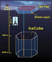 Layout of IceCube