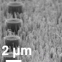 A unique blend of nanoscale structures might let us create frost-proof surfaces