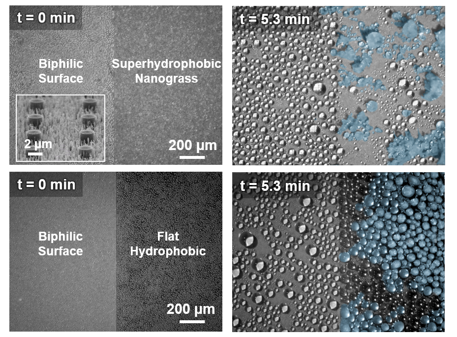 Anti-icing nanostructures on a surface prevent frost formation
