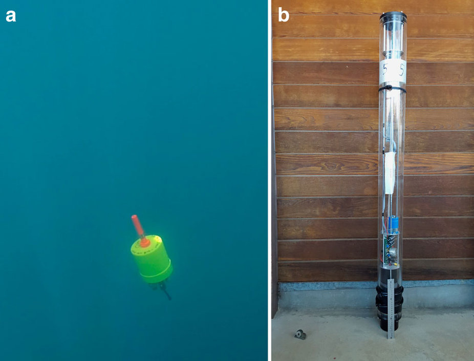 A Mini-Autonomous Underwater Explorer in the ocean, and a floating