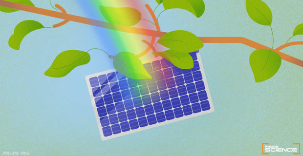 Here Comes the Sun <br>Scientists are developing greener and cheaper ways to pave our way to a solar energy future
