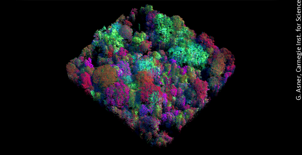 Imaging Forests for Environmental Assessments <br>Airborne spectroscopy is giving scientists the ability to collect data on the environment at an unprecedented rate.